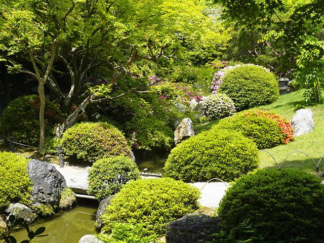 庭、造園、庭の植栽